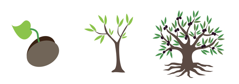 Bushes clipart fruit, Bushes fruit Transparent FREE for download on  WebStockReview 2020